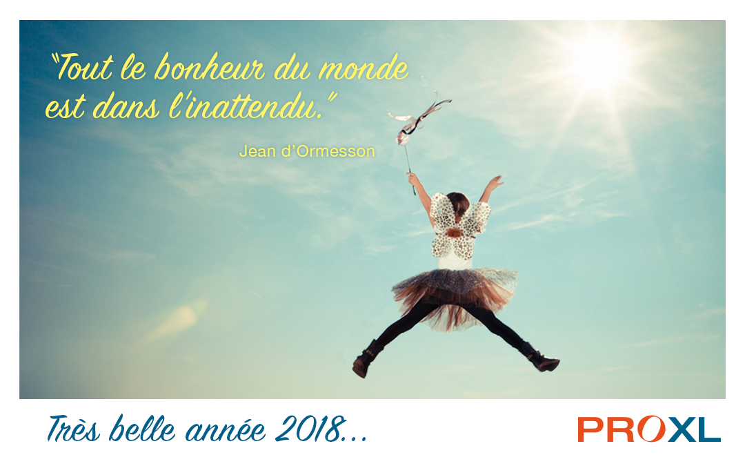 Jolie et douce année 2018 !